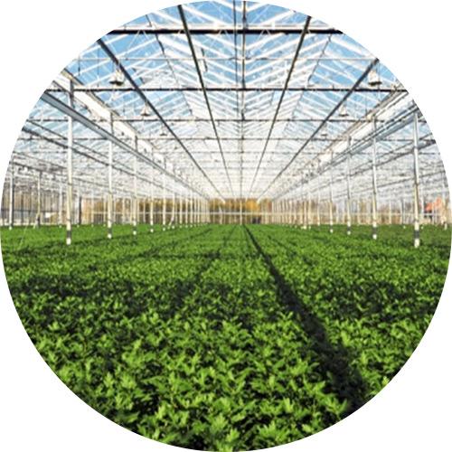 GreenhouseCircle
